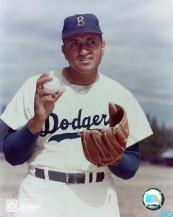 don newcombe celebrity information