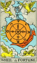 Daily Growth Tarot Card