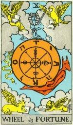 Daily Growth Tarot Card